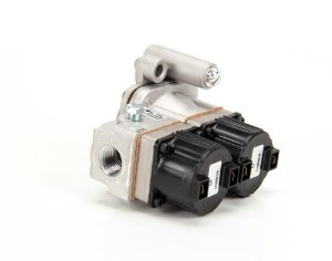 Lincoln 369263 Dual Solenoid Valve 24V Natural/LP Gas